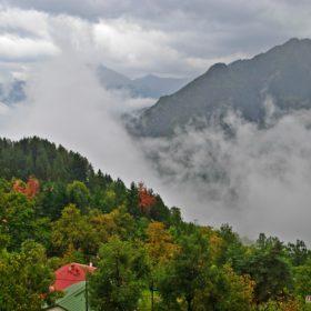 Ελάτη Τρικάλων με ομίχλη