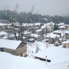 χιονισμένη Ελάτη Τρικάλων