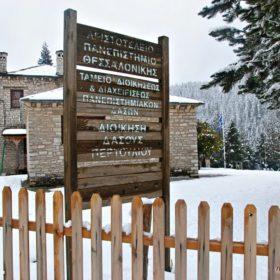 Ελάτη Περτούλι χιονισμένα
