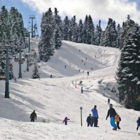 Ελάτη, Περτούλι, Χιονοδρομικό Κέντρο Περτουλίου, πίστα χιονοδρομικού