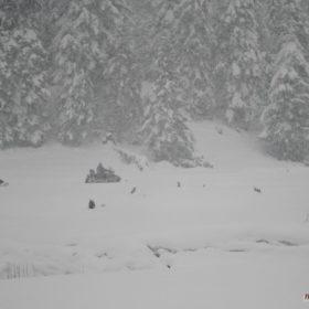 Ελάτη, Περτούλι, οχήματα χιονιού, λιβάδια Περτουλίου