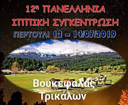 12η Πανελλήνια Ιππική Συνάντηση 2019, Περτούλι