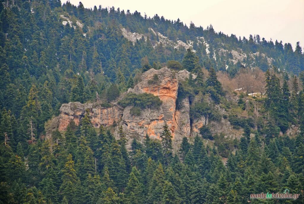 Κόκκινος Βράχος, Ελάτη